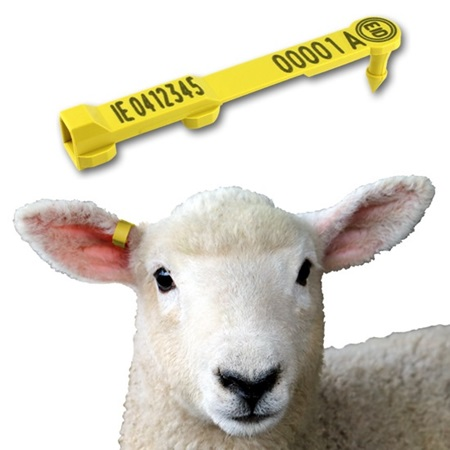 Picture for category Sheep Tags